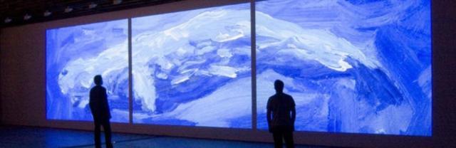 blue whale, Jacco Olivier